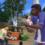 The Sims 4 «Кошки и собаки»: факты из финального лайвстрима о городке, питомцах и режиме покупки