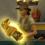 Реликвии в The Sims 4 Приключения в джунглях