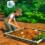 Навык археологии в The Sims 4 Приключения в джунглях