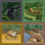 Квесты в The Sims 4 Приключения в джунглях