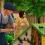 """Разведение насекомых на ферме """"Вошки-Крошки"""" в The Sims 4: Экологичная жизнь"""