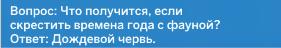 shutka-3